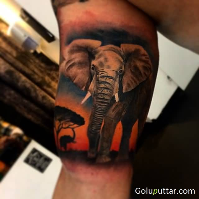 Popular African Animal Tattoo