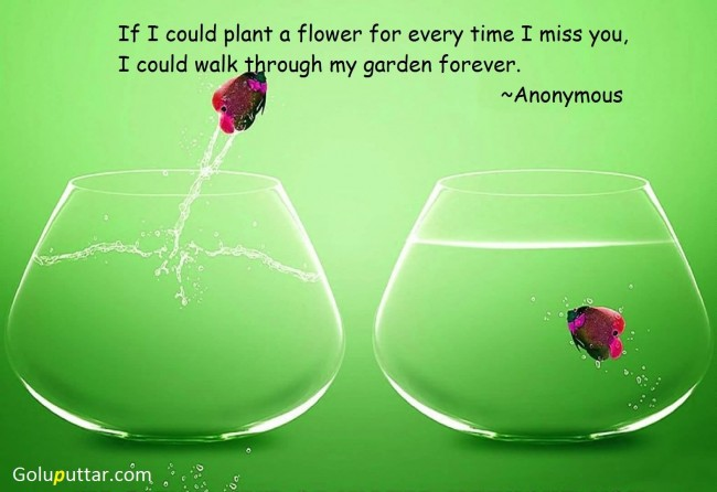Amazing Missing You Quote Every Time I Miss You
