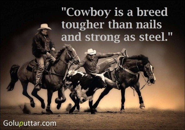 Awesome Cowboy Quote Breed Of Cowboy