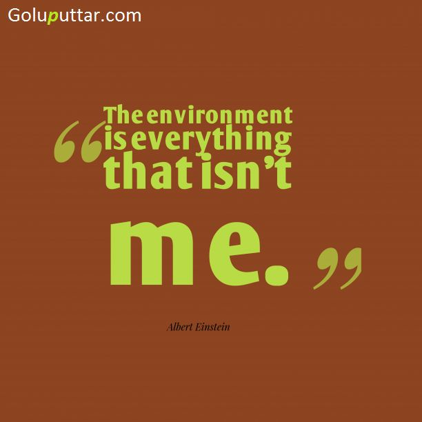 Best Environment Quote It's Everything