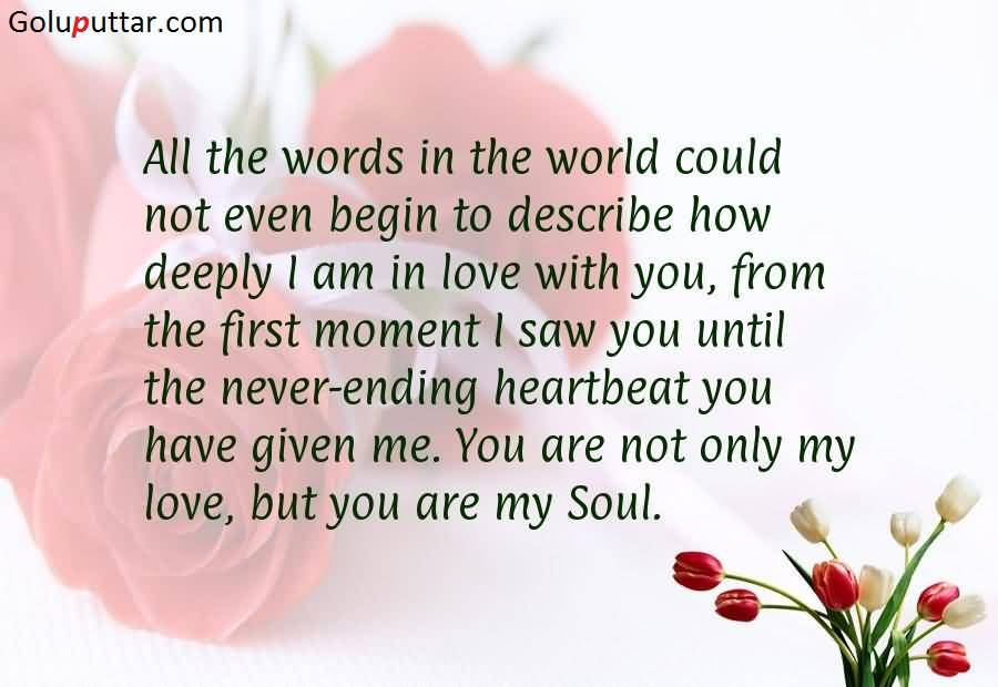 funny love quote you are not my love you are my soul