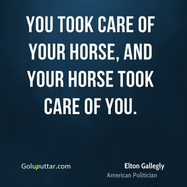 Impressive Horse Quote Take Care Of Your Horse