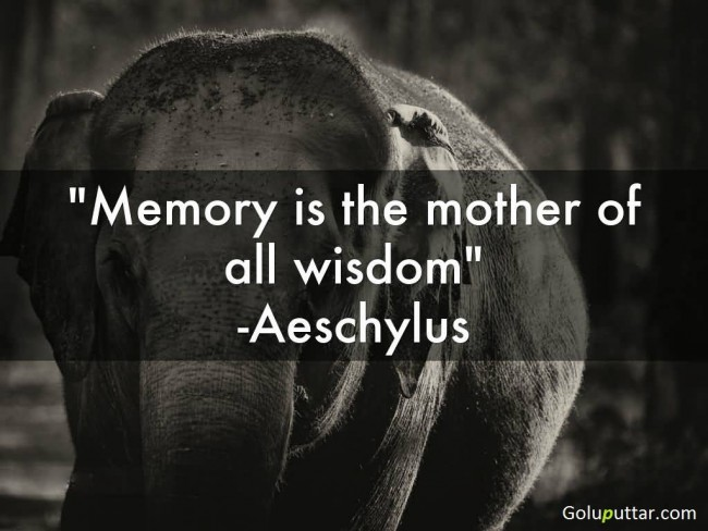 Mind Blowing Memory Quote It's The Mother Of All Wisdom