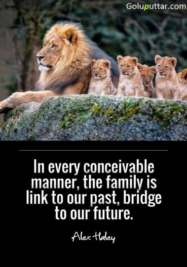 Perfect Past Quote Family Is Most Important In Our Life