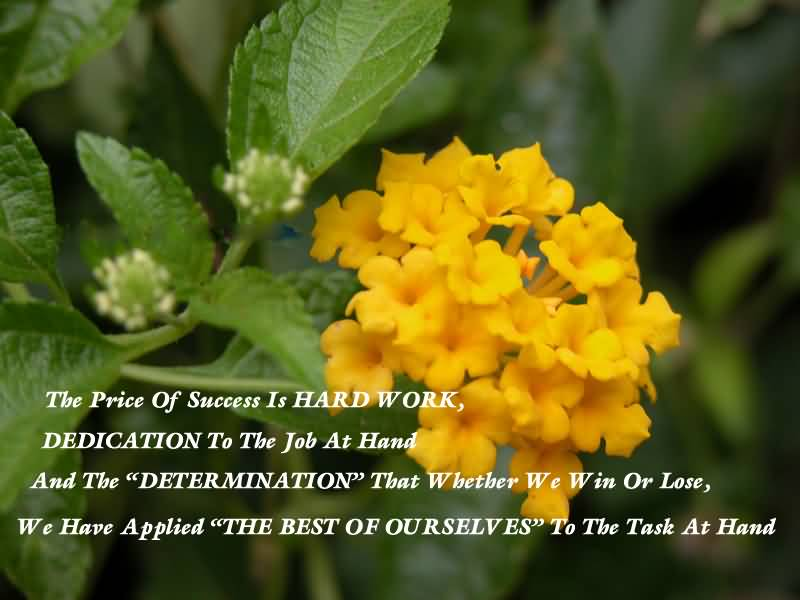 Mind Blowing Determination Quote About Price Of Hard Work
