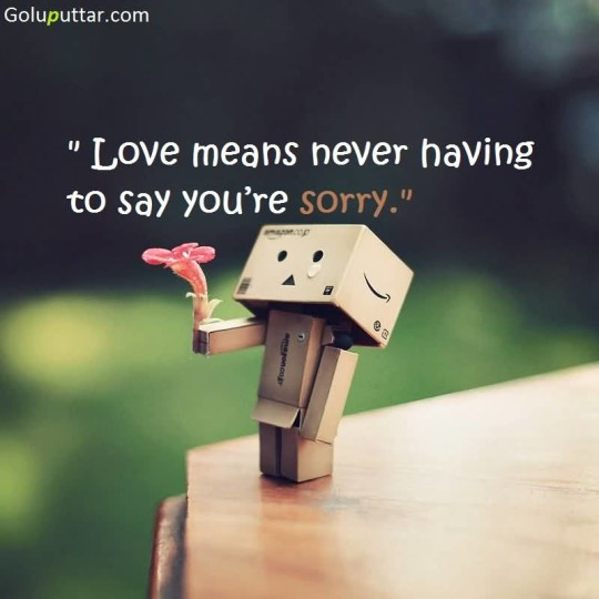 Perfect Sorry Quote No Need In Love - Copy