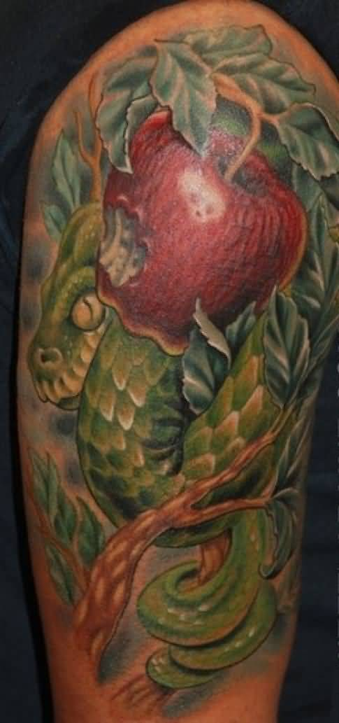 Realistic apple snake tattoo design with tree photos and for Apple tree tattoo designs
