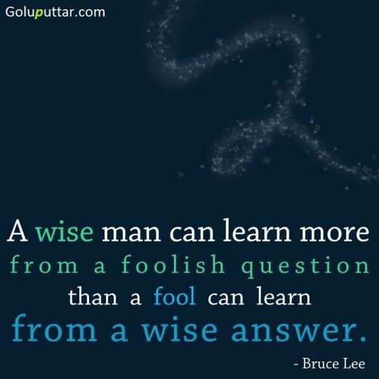 Stunning Wise Quote Fool Only Learn From A Wise Answer - Copy