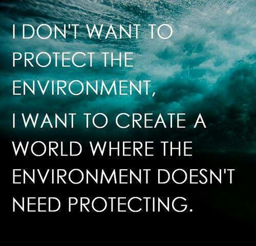 environment sayings - 876