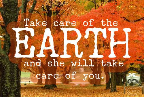 environment sayings - 876989 (2)
