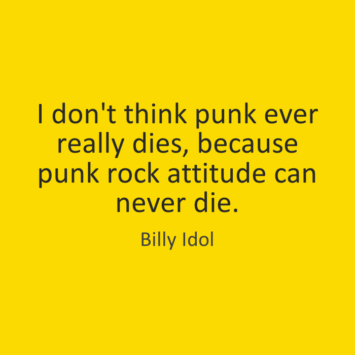 I don't think punk ever really dies, because punk rock attitude can never die. Billy Idol