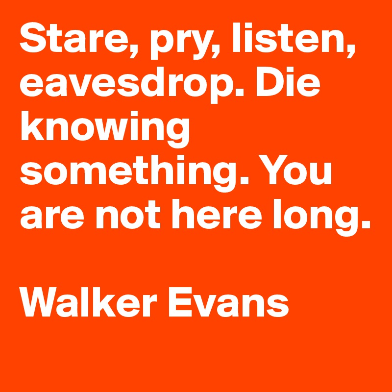 Stare, pry, listen, eavesdrop. Die knowing something. You are not here long. Walker Evans