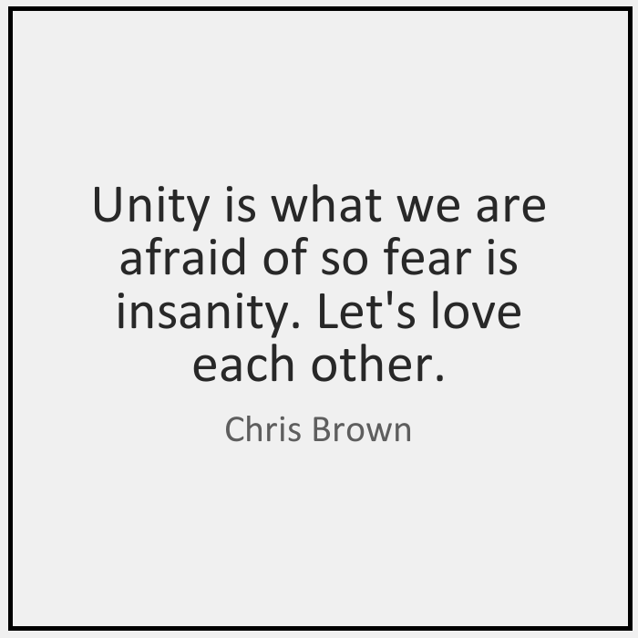 Unity is what we are afraid of so fear is insanity. Let's love each other. - Chris Brown