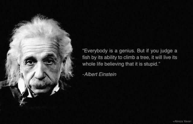 Everybody Is A Genius But If You Judge A Fish By Its Ability To Climb A Tree – Albert Einstein