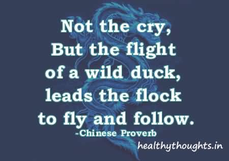 Not The Cry But The Flight Of A Wild Duck Leads The Flock To Fly And Follow – Chinese Proverb