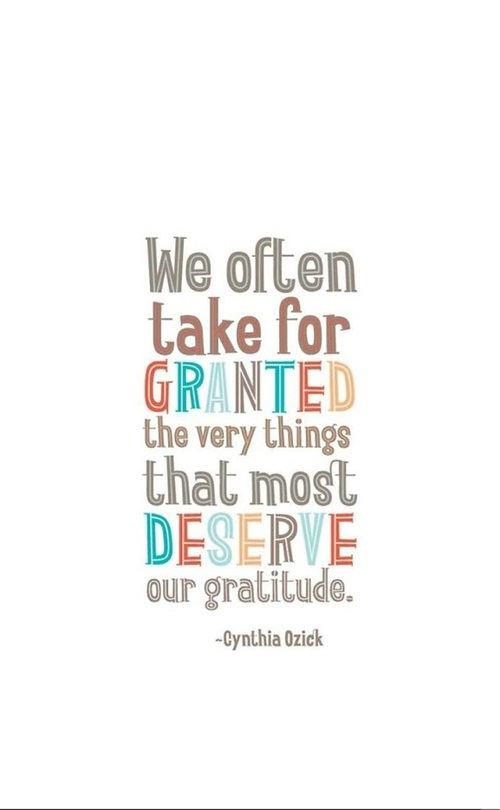 We often take for granted the very things that most deserve our gratitude - Cynthia Ozick