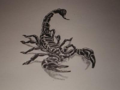 21black scorpio tattoo idea