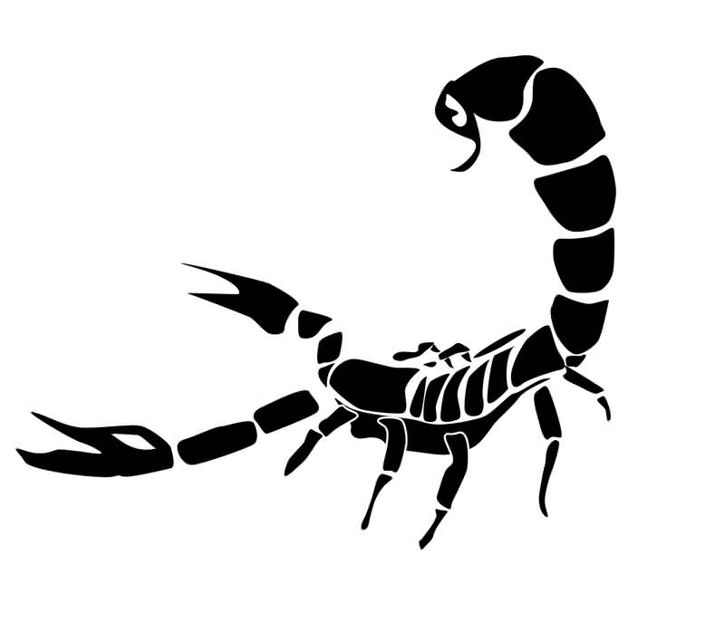 26black scorpio tattoo idea