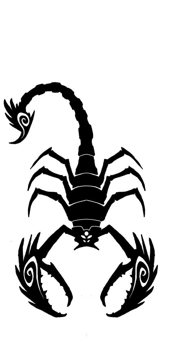 61black scorpio tattoo idea
