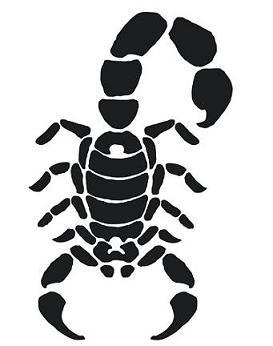 69black scorpio tattoo idea