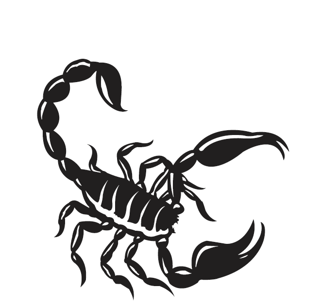 70black scorpio tattoo idea