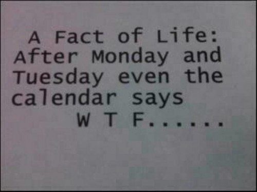 a-fact-of-lifeafter-monday-and-tuesday-even-the-calendar-says-w-t-f-inspirational-quote