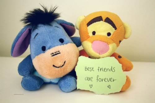 best-friends-are-forever-friendship-quote
