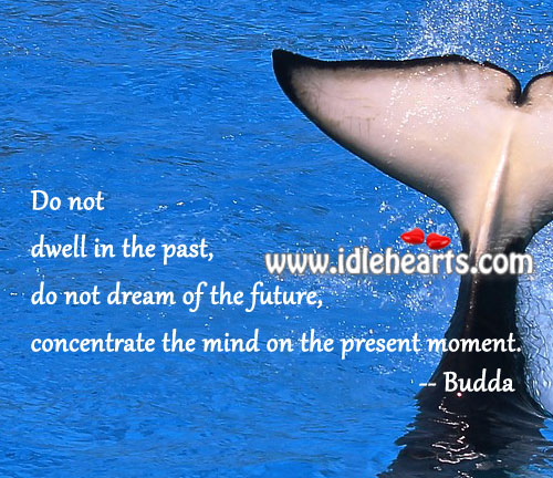 do-not-dwell-in-the-pastdo-not-dream-of-the-futureconcentrate-the-mind-on-the-present-moment-future-quote-2