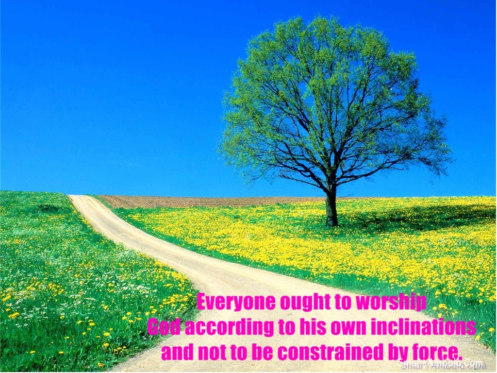 everyone-ought-to-worship-god-according-to-his-own-inclinations-and-not-to-be-constrained-by-force-god-quote