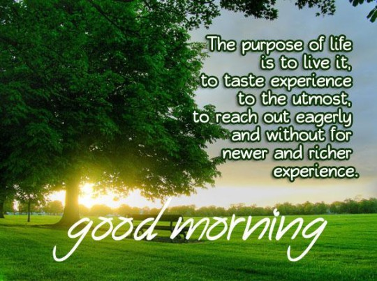 good morning quotes an saying about life - 86656