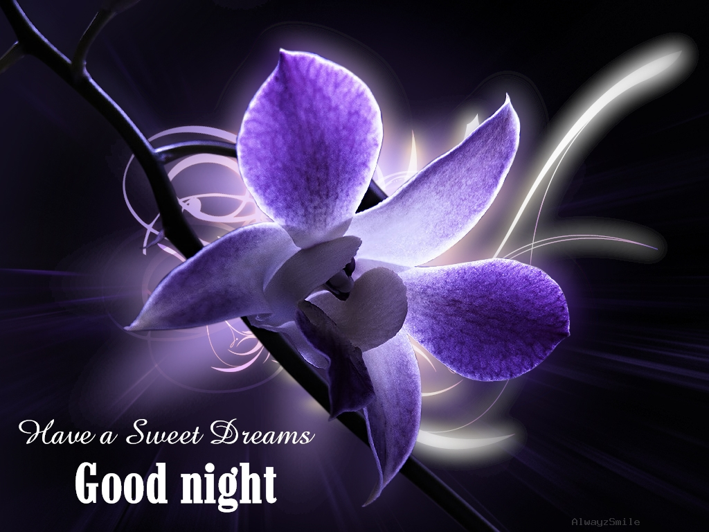 have-a-sweet-dreams-good-night-quote