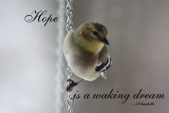 hope-is-a-waking-dream-inspirational-quote