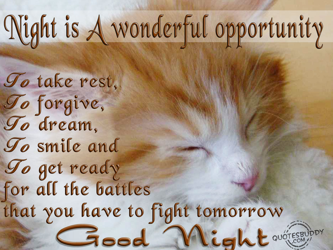 night-is-a-wonderful-opportunity-to-take-restto-forgiveto-dreamto-smile-and-to-get-ready-for-all-the-battles-that-you-have-to-fight-tomorrow-good-night-quote