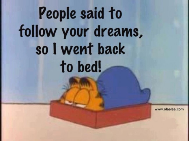 people-said-to-follow-your-dreamsso-i-went-back-to-bed-funny-quote