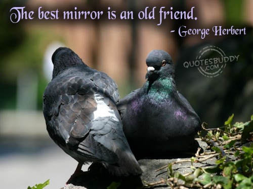 the-best-mirror-is-an-old-friend-friendship-quote