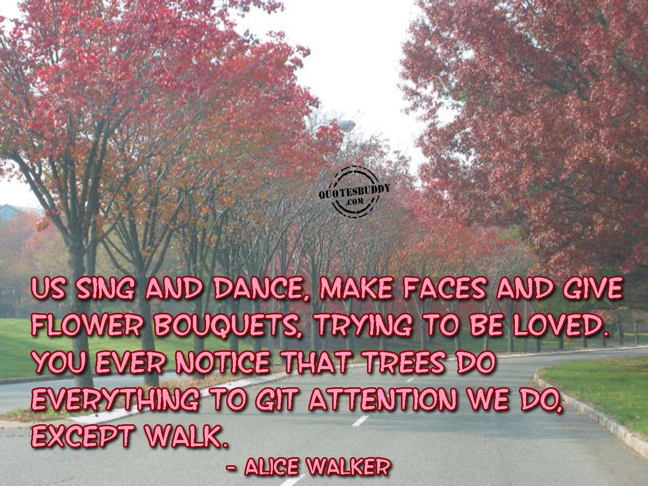 you-ever-notice-that-trees-do-everything-to-get-attention-we-do-accept-walk-good-day-quote