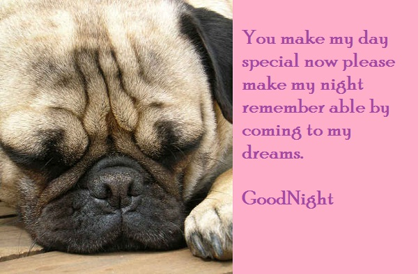 you-make-my-day-special-now-please-make-my-night-remember-able-by-coming-to-my-dreams-good-night-quote