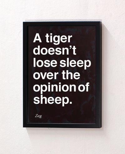 A tiger doesn;t lose sleep over the opinion of sheep. Shahir Zag