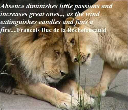 . Absence diminishes mediocre passions and increases great ones, as the wind extinguishes candles and fans fires.