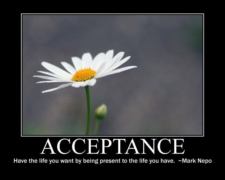 Acceptance have the life you want by being present to the life you have. Mark Nepo
