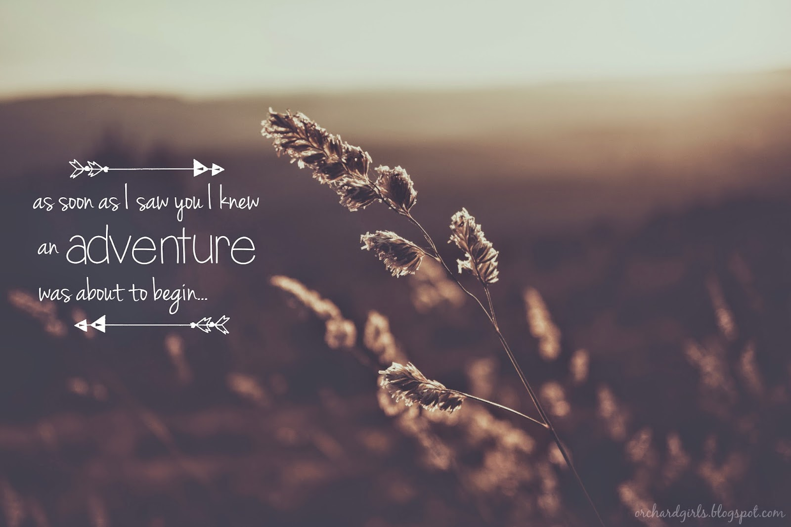 As soon as I saw you I knew an adventure was about to begin