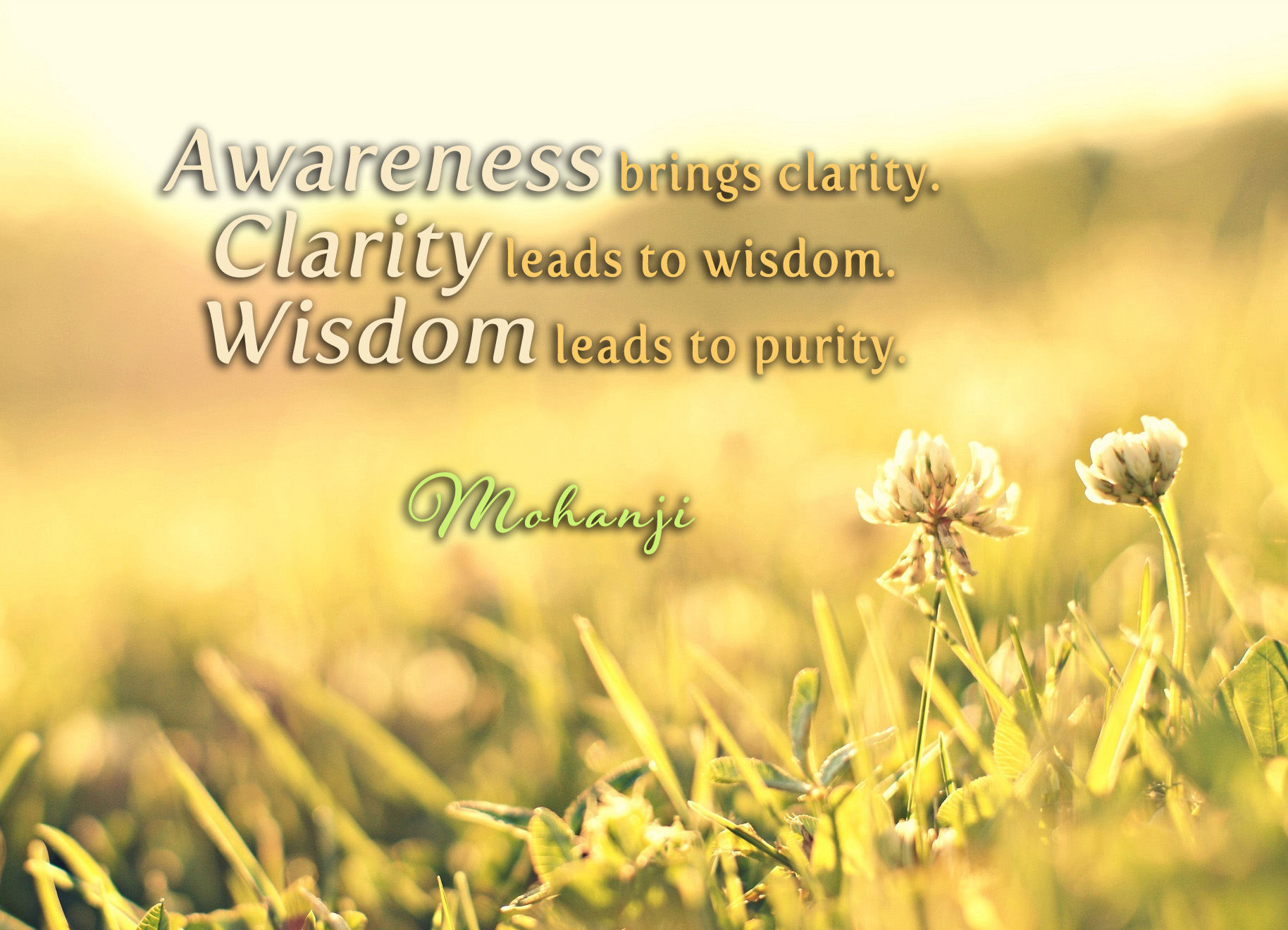 Awareness brings Clarity. Clarity leads to wisdom. Wisdom leads to purity. Mohanji