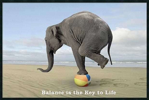 Balance Is The Key To Life.