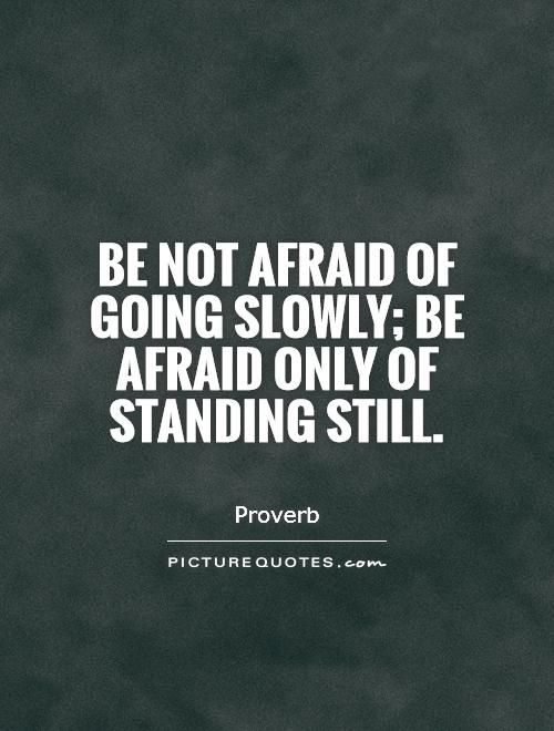 Be not afraid of going slowly; be afraid only of standing still
