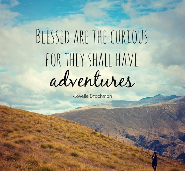 Blessed are the curious, for they shall have adventures - Lovelle Drachman