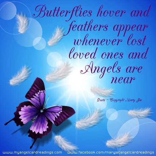 Butterflies hover and feathers appear. Whenever lost loved ones or Angels are near.