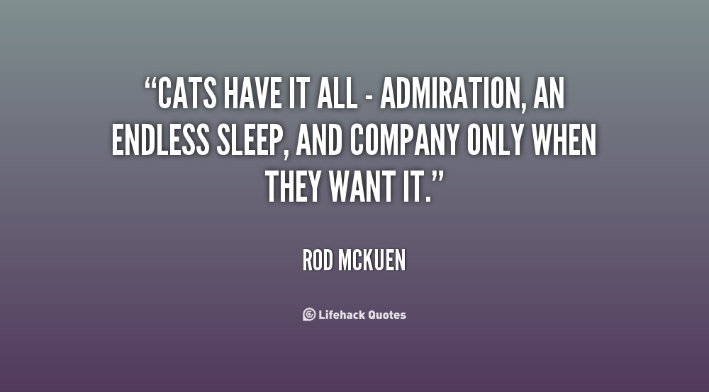 Cats have it all - admiration, an endless sleep, and company only when they want it - Rod McKuen