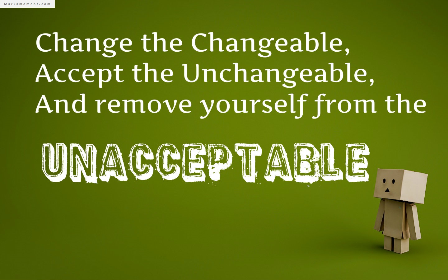 Change the changeable, accept the unchangeable, and remove yourself from the unacceptable. Denis Waitley