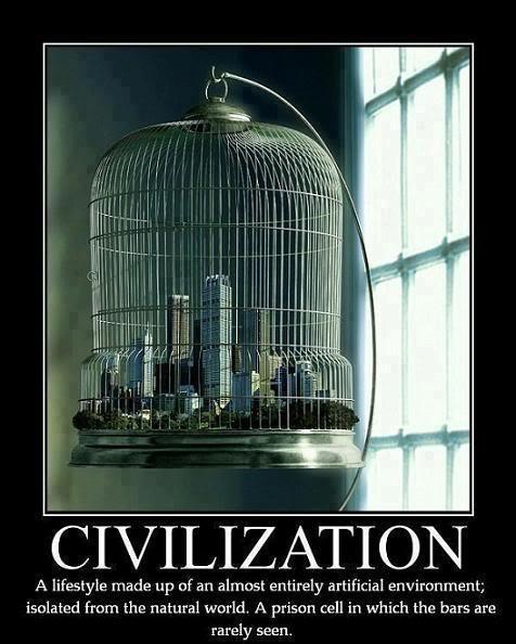 Civilization a lifestyle made up of an almost entirely artificial environment, isolated from the natural world; a prison cell in which the bars are ...