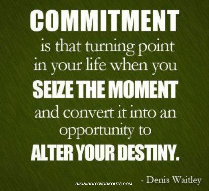 Commitment is that turning point in your life when you seize the moment & convert it into an opportunity to alter your destiny. Denis Waitley